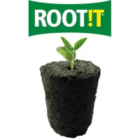 Root!t Natural Rooting Spong
