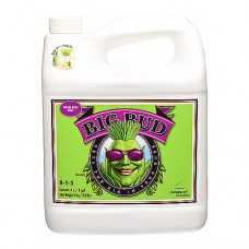 Advanced Nutrients Big Bud 10 л