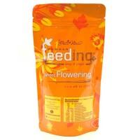 Powder Feeding short Flowering 125 гр
